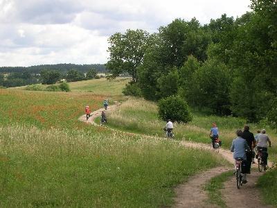 Beim Radeln die Natur erleben